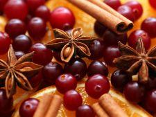 Adu aromele Craciunului in casa ta! Odorizante de casa din ingrediente 100% naturale